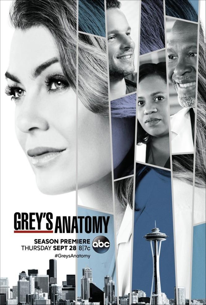 grey's anatomy s14