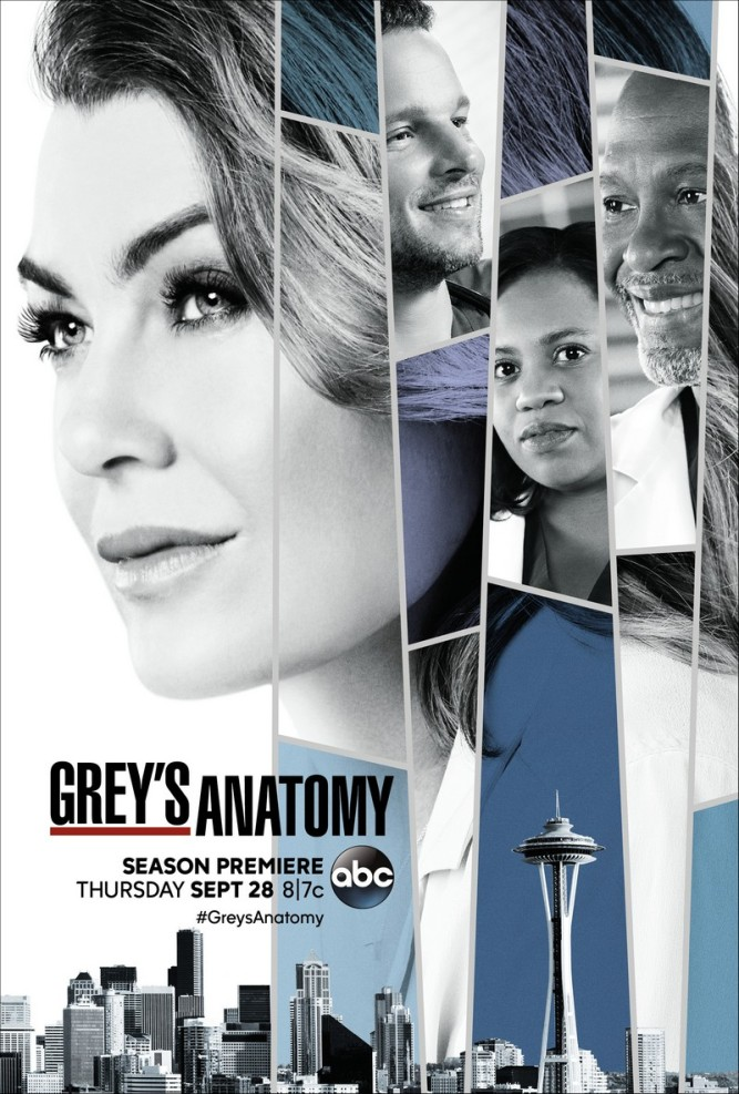 grey's anatomy s14